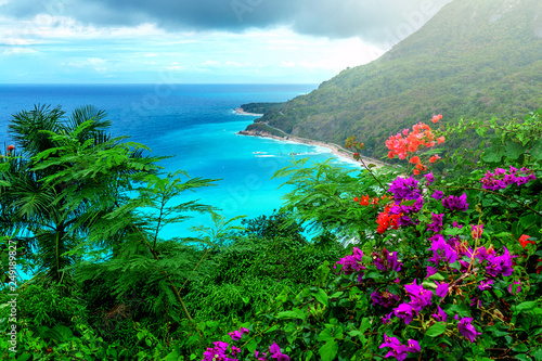 Recess Fitting Green delightful Caribbean landscape