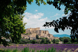 Fototapeta Las - France, Grignan, view to the village