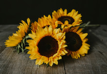 Close-up Of Fresh Sunflowers O...