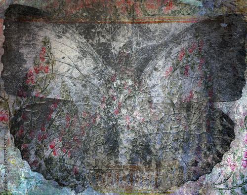 grunge tekstury tło motyl