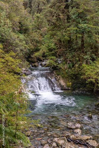 Water Fall Pumalin Nature Sanctuary