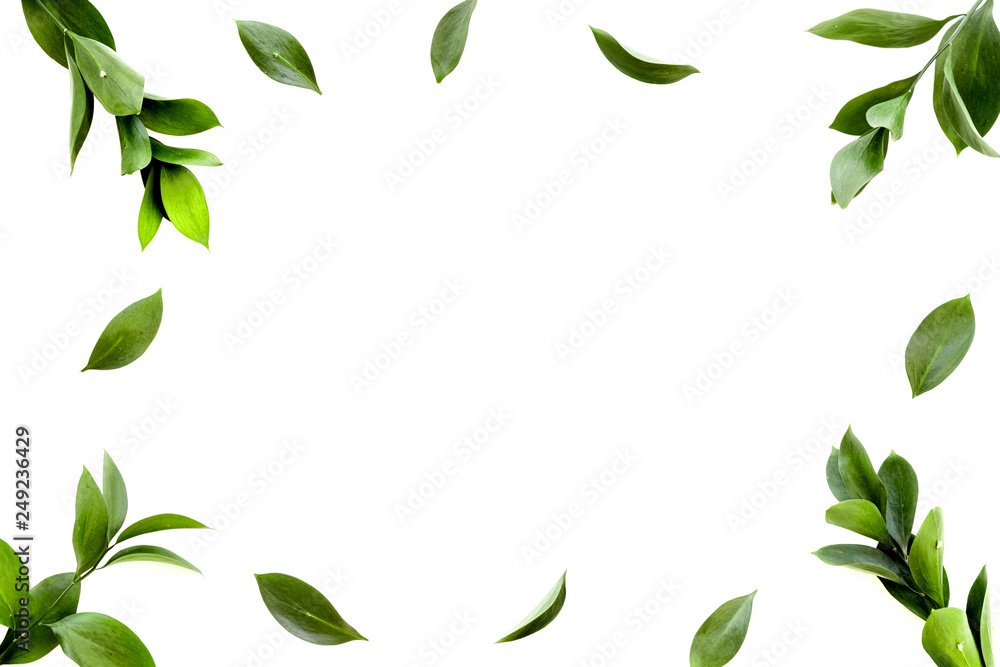Fototapety, obrazy: Spring background. Fresh green leaves frame on white background top view space for text