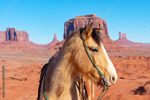 Foto auf Gartenposter Koralle Beautiful horse head portrait. Black mane. Green halter. Scenic desert and mountain landscape with mesas, buttes, and spires of American Southwest in Monument Valley under blue sky