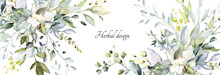 Botanical Design. Horizontal Herbal Banners On White Background For Wedding Invitation, Business Products. Web Banner With Leaves, Herbs