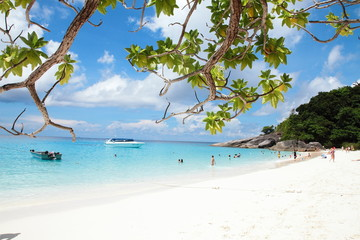 Beautiful daylight and Breathtaking tropical beach at Similan Island, Wonderful tropical beach for relaxation and travel, Special white sandy at the exotic beach