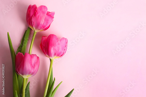 Fotobehang Tulp Bouquet of beautiful pink tulips