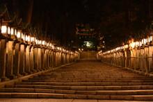 灯籠と鳥居(Lanterns&Torii Gate)