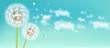 Spring dandelion flower Vector realistic. Sky background soft bokeh illustrations