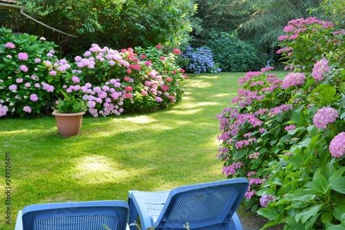 Papiers peints Jardin Beautiful garden with hydrangeas in Brittany