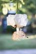 canvas print picture - fleur de baobab et abeilles
