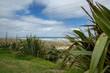 Coast and beach at Glinks Gully New Zealand