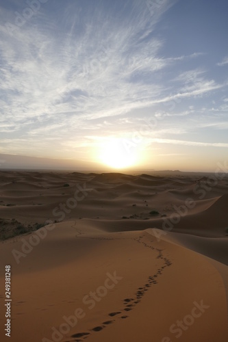 Poster de jardin Desert de sable Sahara