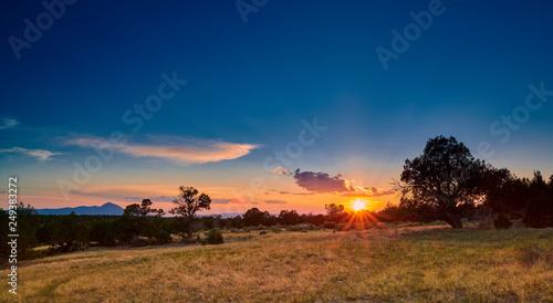 Foto auf Gartenposter Blaue Nacht Sunset Over Open Field