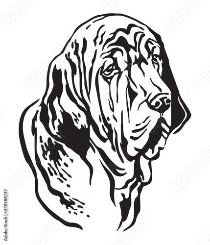 Fototapety, obrazy: Decorative portrait of Fila Brasileiro Dog vector illustration