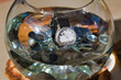 watch in glass bowl with water