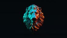 Silver Adult Male Lion With Re...