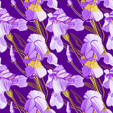 Floral Pattern With Iris Flowe...