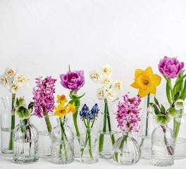 Wiosenny kwiat w szklanych wazonach