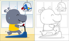 Vector Cartoon Of Hippo Running On A Treadmill With Cockatoo, Coloring Book Or Page