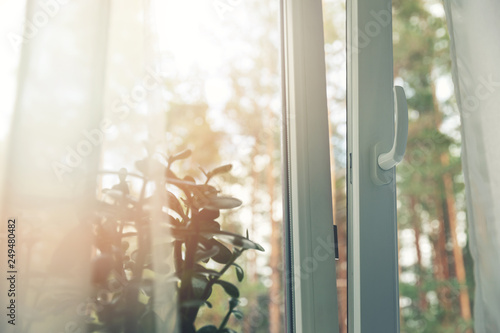 Fototapeta opened white plastic pvc window with forest background obraz