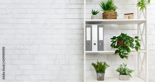 Fotografie, Obraz Office bookshelf with plants and folders over wall
