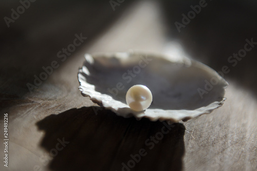 Fotografia a lit pearl lies on the edge of the shell