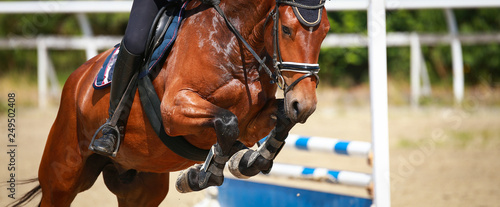 Horse over the jump, close-up of the angled front legs..