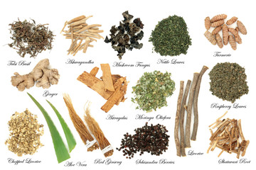 Adaptogen herb and spice selection on white background. Used in herbal medicine to help the body resist the damaging effect of stress and restore normal physiological functioning. With titles.
