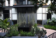 Courtyard With Modern Fountain And Succulents