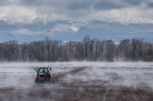 Hokkaido, Tractor Seeding A Field While It Is Evaporating From The Warm Ground