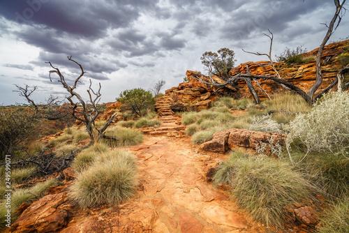 Obraz na plátne hiking in kings canyon in watarrka national park, northern territory, australia