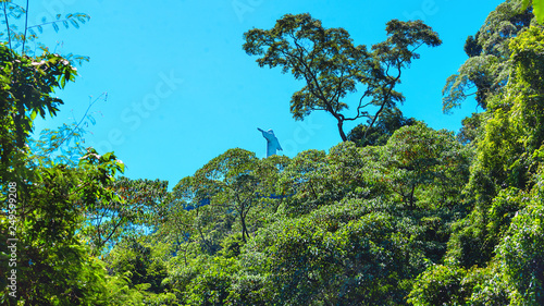 View of Rio de Janeiro with Christ Redeemer through the park trees Fototapet