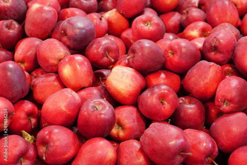 Fotografie, Obraz  Fresh picked red delicious apples background in the harvest season