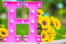 H Letter Box Pink Plastic Decoration Light Infant Sunflower Flowers Caused Sandal Girl