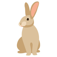 Cartoon Rabbit, Vector Illustration ,  Front
