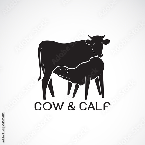 Vector of cow and calf on white background Fototapete