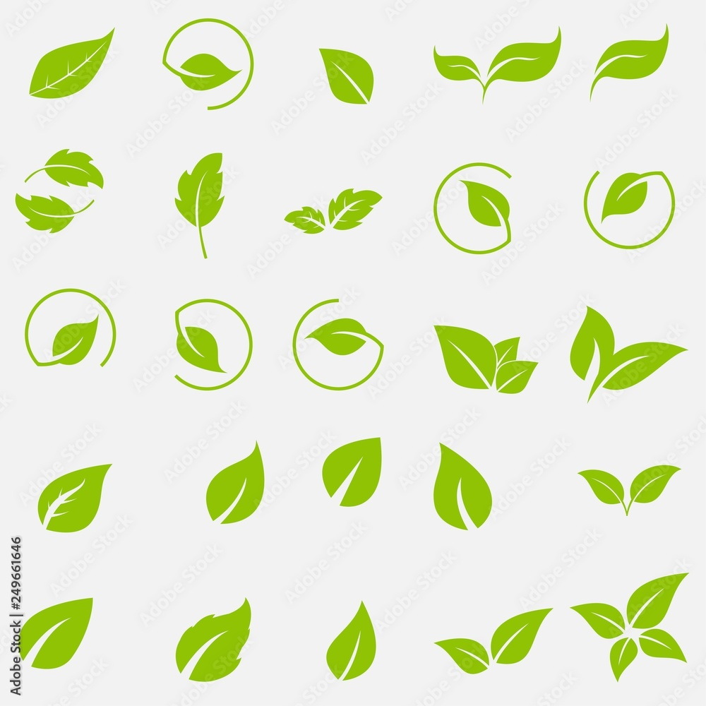 Fototapeta Vector collection with green leaves in flat style for icons and graphic design