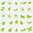 Vector collection with green leaves in flat style for icons and graphic design
