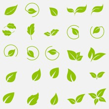 Vector Collection With Green L...