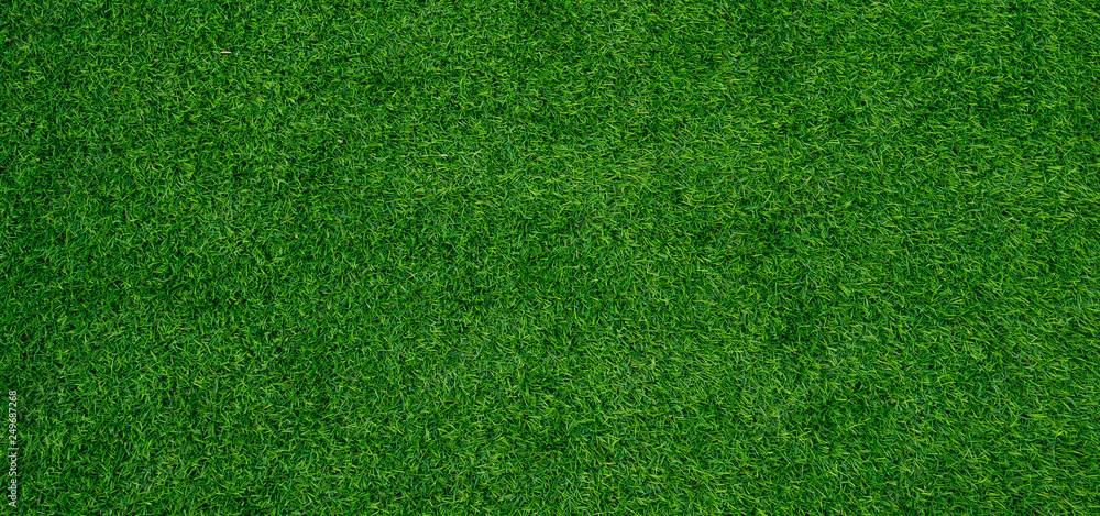 Fototapety, obrazy: grass field background, green grass, green background