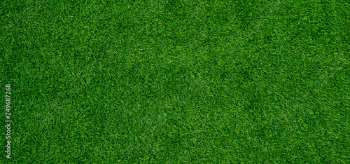 Tuinposter Gras grass field background, green grass, green background