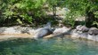 Two seals in the zoo are sunbathing.
