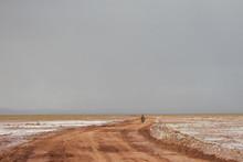 Bolivia Chile Deserto Beleza T...