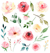 Watercolor Flowers And Leaves Set, Floral Illustration For Greeting Card, Invitation And Other Printing Design. Isolated On White. Hand Drawing.