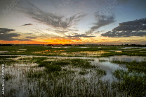Stampa su Tela Marsh Sunset