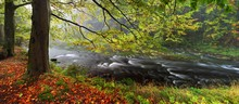 Foggy Autumn Or Summer Landscape. Misty Foggy Morning With River With Rays Of Light In A Valley Of Bohemian Switzerland Park. Detail Of Forest, Landscape Of Czech Republic, Beautiful National Park