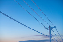Frost And Snow Covered Power Lines During Very Cold Winter Against Sky