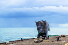 Abandonded Shopping Trolly With The Ocean Iand Moody Sky In The Background