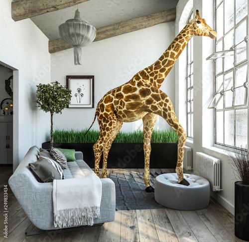 Außergewöhnliche Giraffenwohnung mit großen Fensterflächen Wall mural