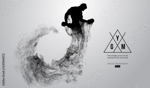 streszczenie-sylwetka-kulturysty-logo-silow